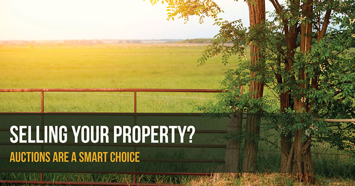 wca_blog_propertyauction101